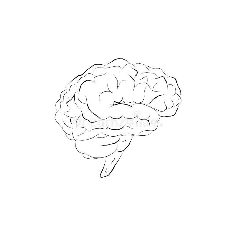 Doodle mózg royalty ilustracja