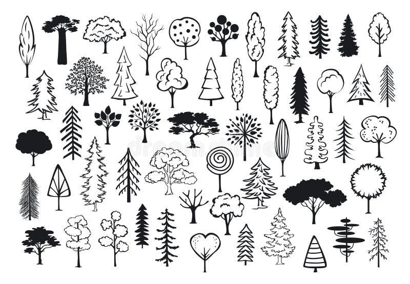 Doodle parkowe lasowe abstrakcjonistyczne sylwetki zarysowywających conifer drzewa ilustracja wektor