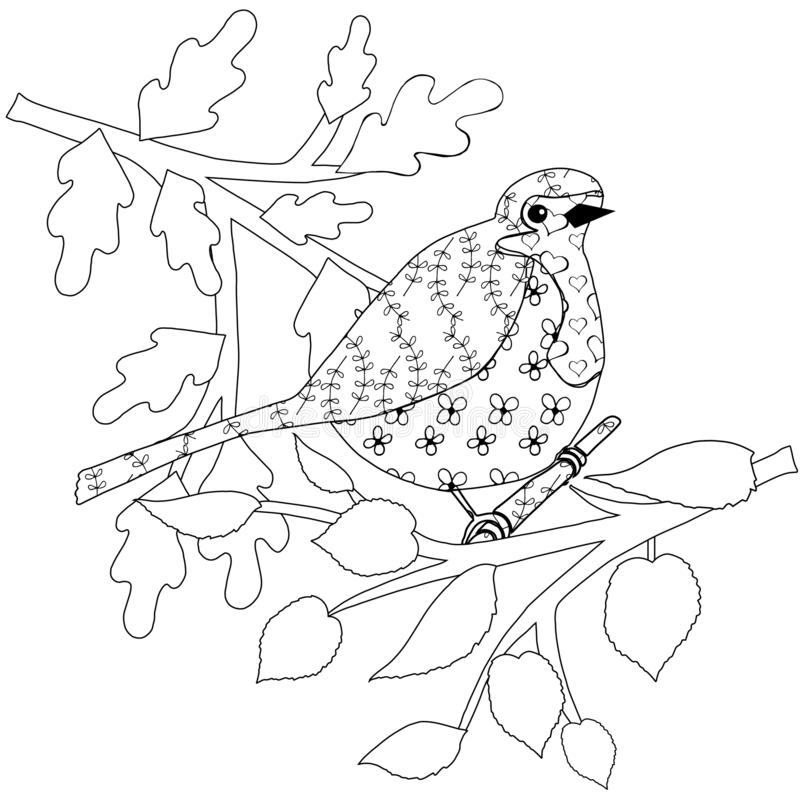 coloring pages robin tree - photo#32