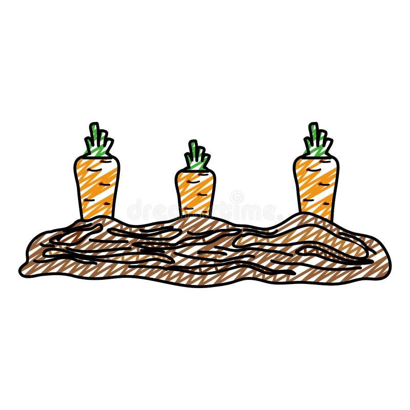 Doodle zdrowy marchwiany świeży warzywo kultywujący ilustracja wektor