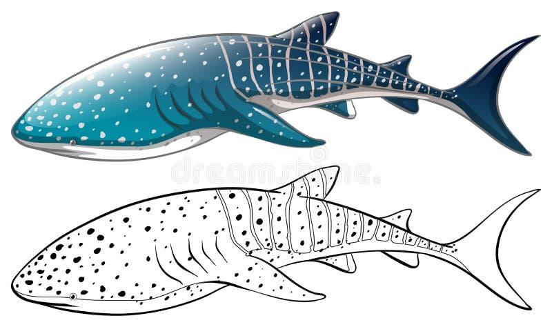 Doodle zwierzęcy kontur zabójcy wieloryb royalty ilustracja