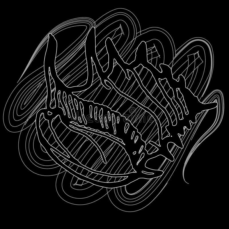 Doodles seashells na czarnym tle zdjęcie royalty free
