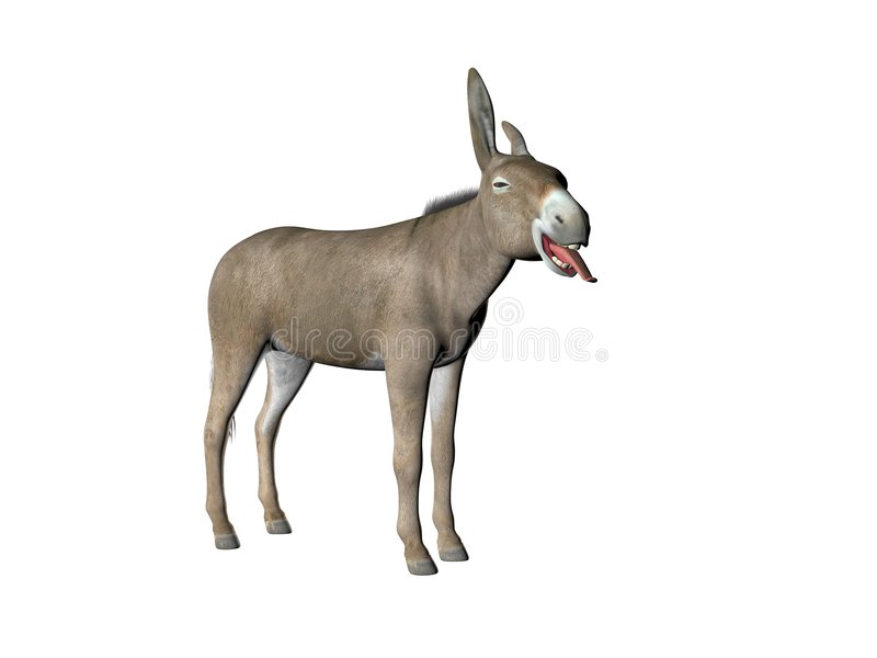 Doof Esel einer stock abbildung