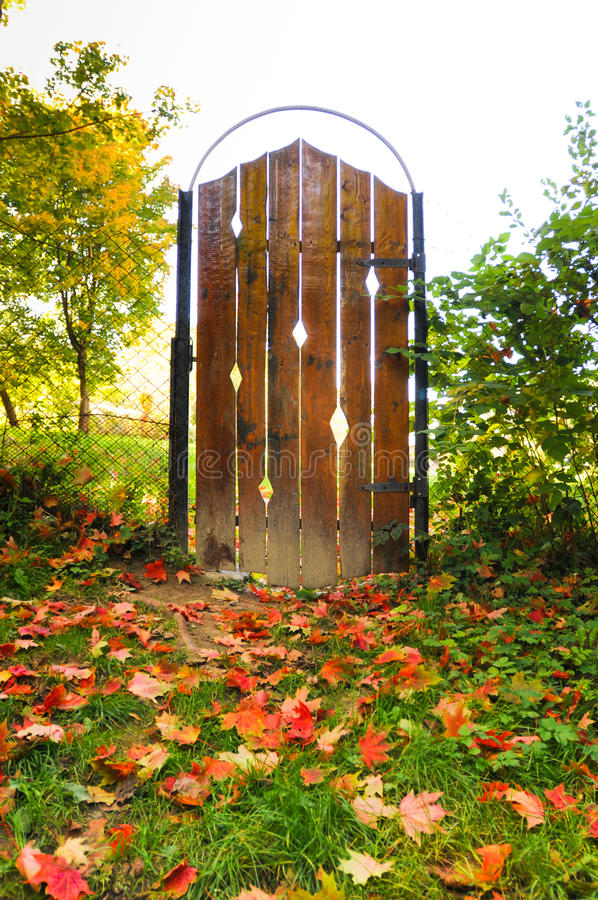 Door at autumn. Wooden beautiful and magic door at autumn with lots of maple leaves stock photo
