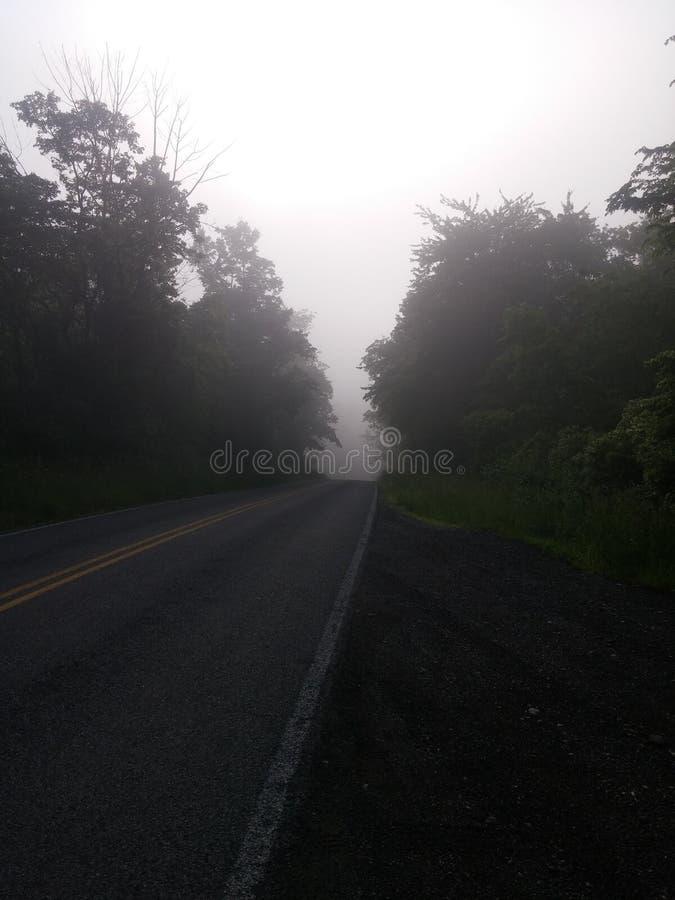 Door de Mist royalty-vrije stock foto's