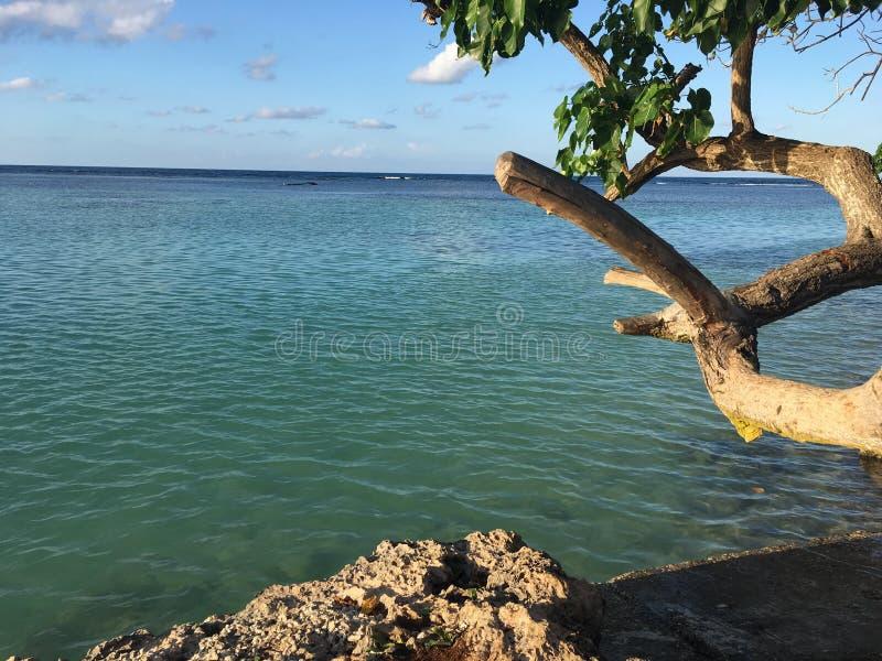Door de overzeese kust royalty-vrije stock foto