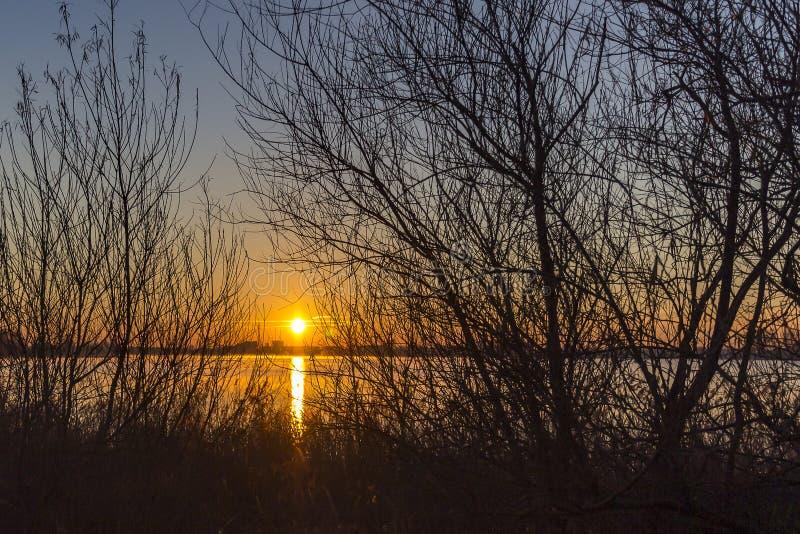 Door de takken van de bomen langs plas van meerzoetermeerse kunt u zien hoe de het toenemen zon de hemel prachtig kleurt royalty-vrije stock foto