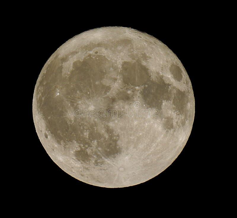 Door het licht van de zilverachtige volle maan stock foto's