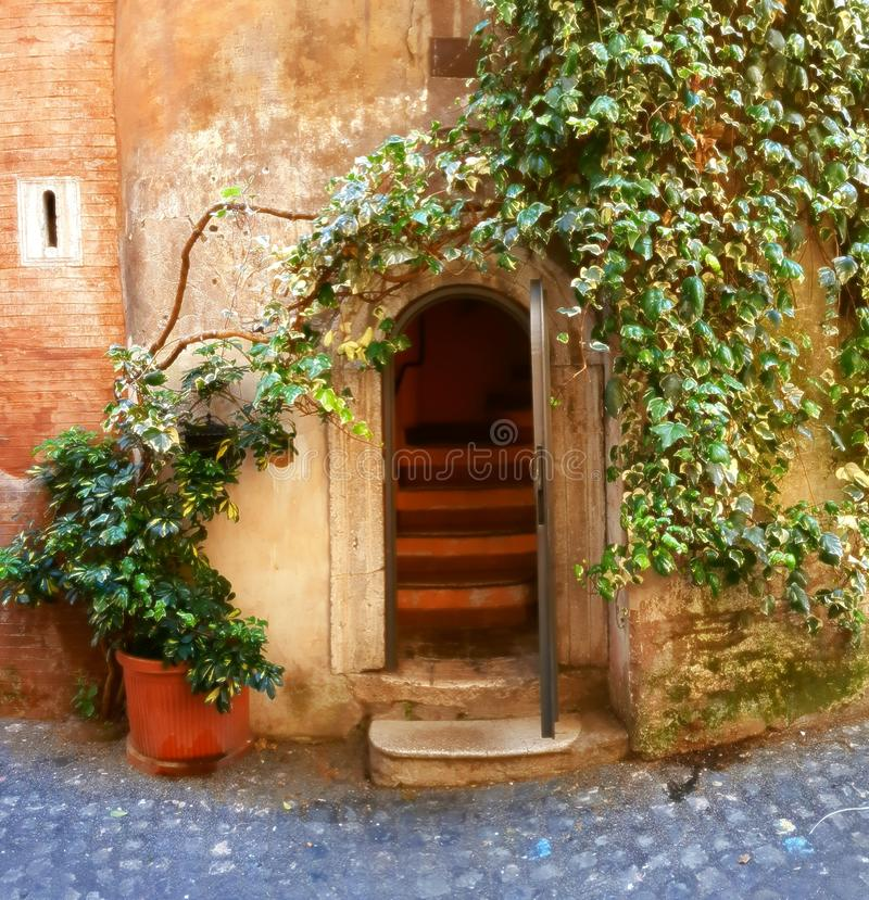 Door and ivy. An ancient door and ivy growing on wall of an old house, Piazza Navona, Rome, Italy stock image