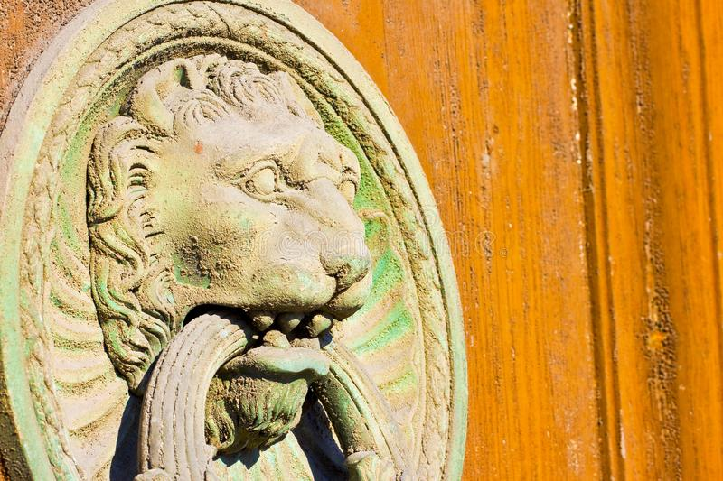 Door Knocker in shape of lion on colored wooden background Tuscany - Italy royalty free stock image