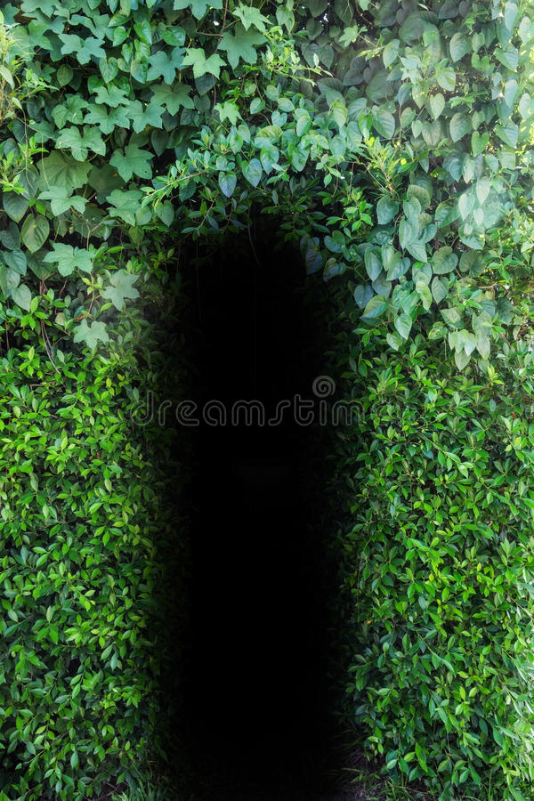 Door natural leaf hole royalty free stock photos