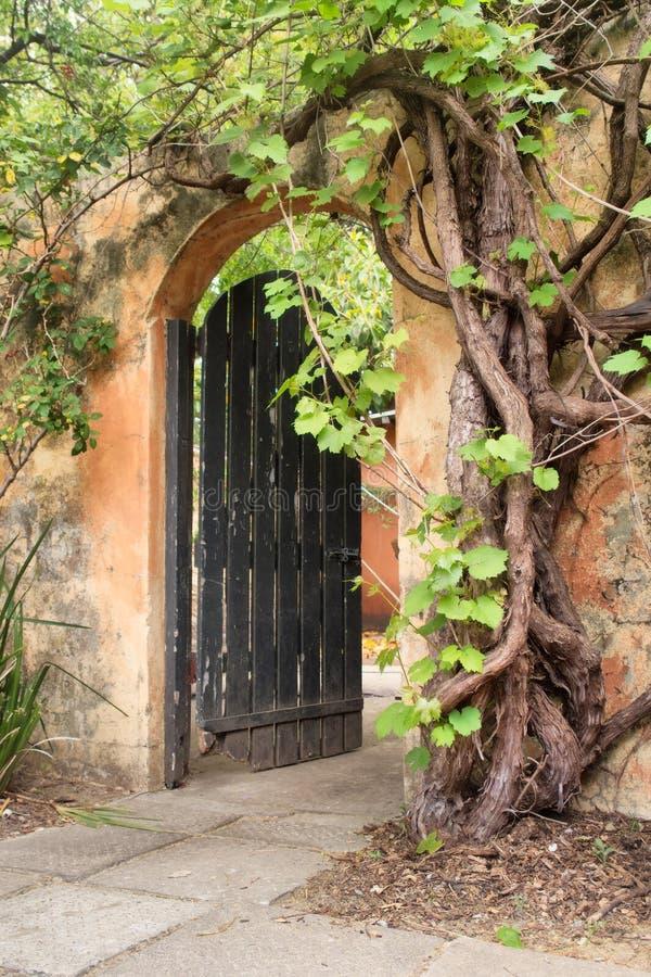 Door in old rustic wall stock image