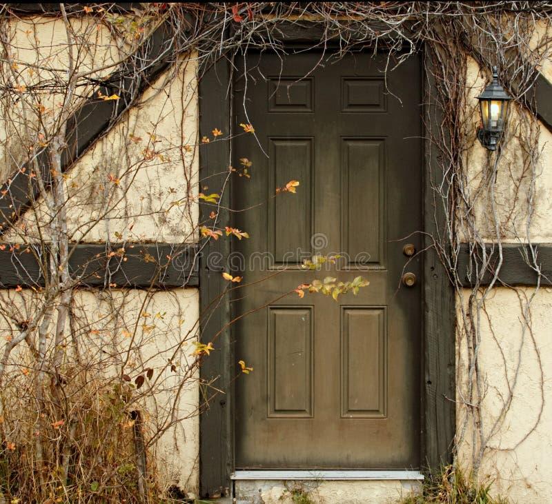 Download Door with overgrowth stock image. Image of door, disheveled - 7358989