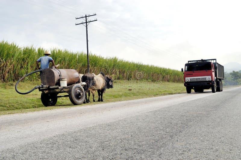 Door paarden getrokken Kar die een Weg in Cuba gebruiken stock afbeeldingen