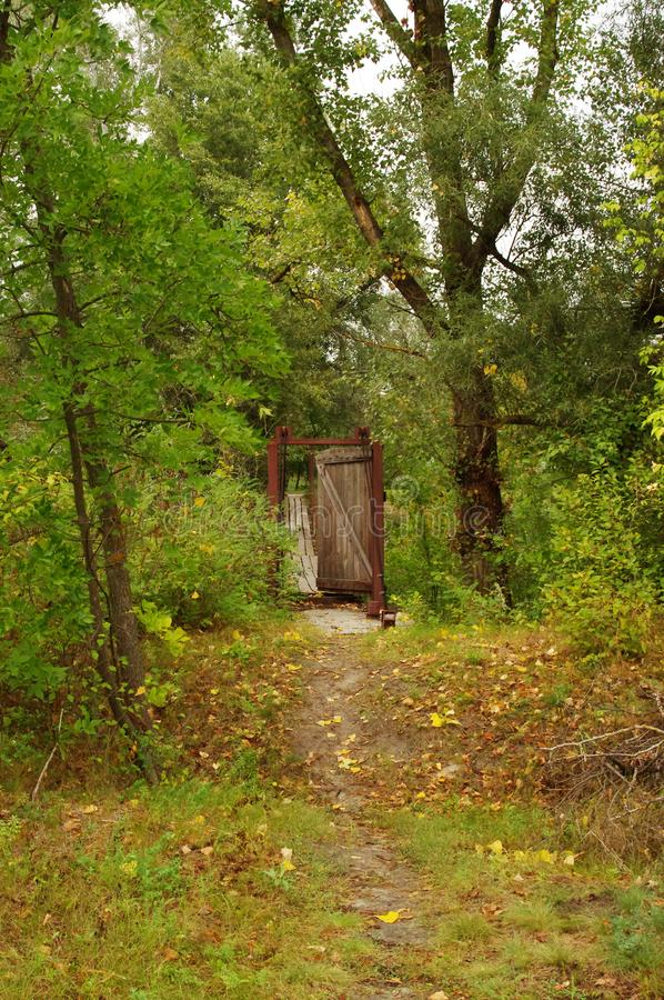 A door in the shade of forest trees. The door of the wooden boards is in the forest. The bridge begins behind it. Beautiful views open from the bridge to the stock photos