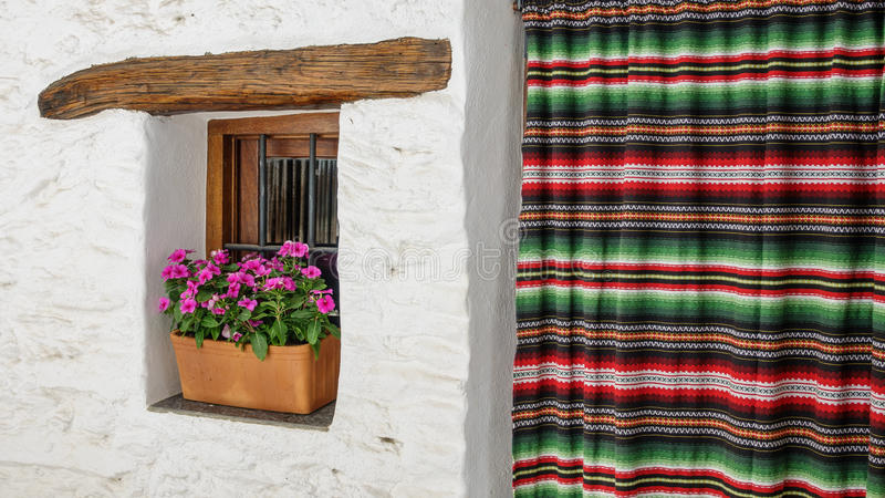 Door and window with flowerpot on white facade royalty free stock photography
