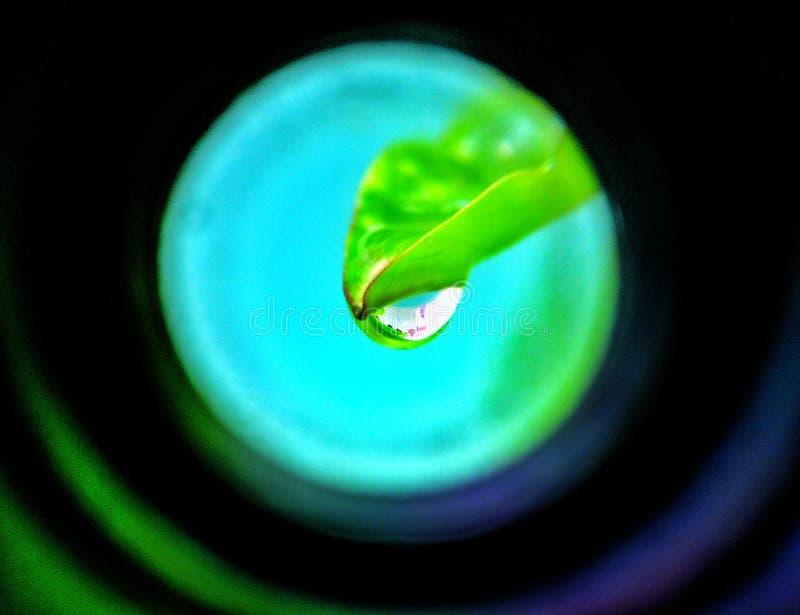 Doorblader me royalty-vrije stock afbeelding