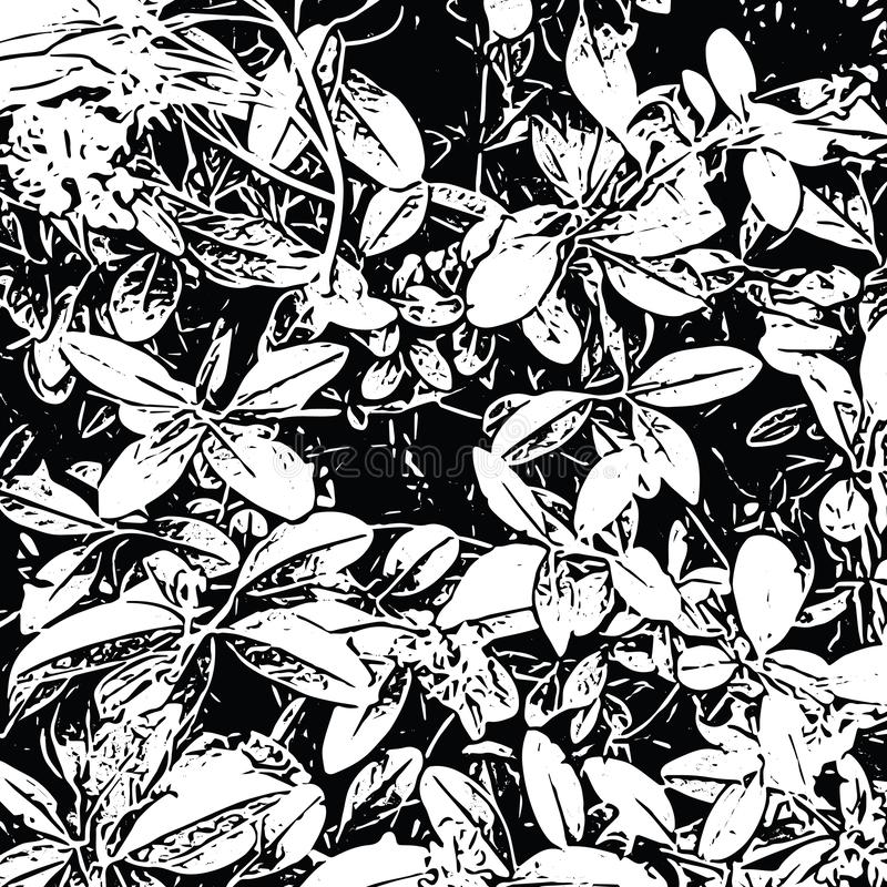 Doorbladert het Grunge natuurlijke bloemenpatroon van struik Abstracte vectortextuurachtergrond in zwart-wit stock illustratie