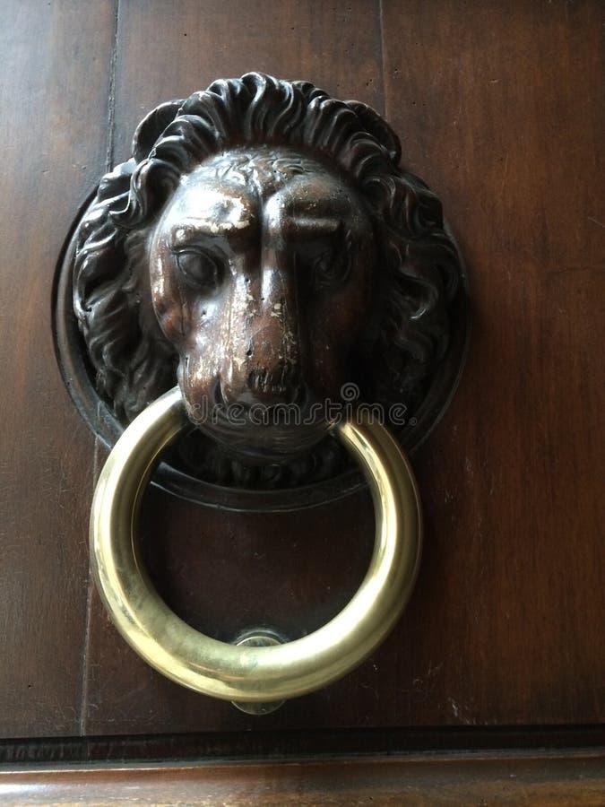 Doorknocker льва стоковые изображения rf