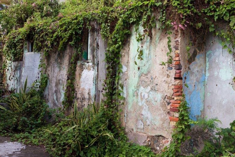 Doorstane en afbrokkelende muur stock afbeeldingen