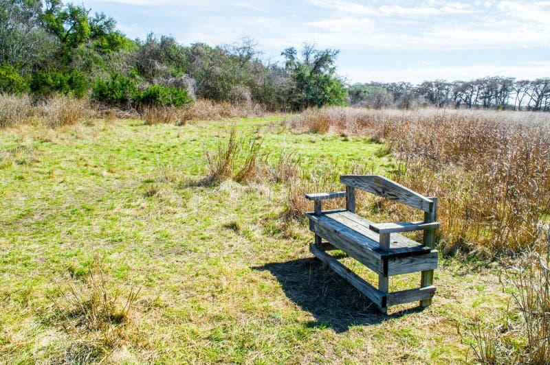 Doorstane houten bank in de prairiegras van Texas en groene bomen met ochtendzonlicht royalty-vrije stock afbeelding