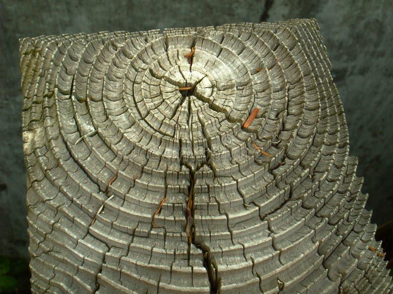 Download Doorstane houten korrel stock foto. Afbeelding bestaande uit post - 54080662