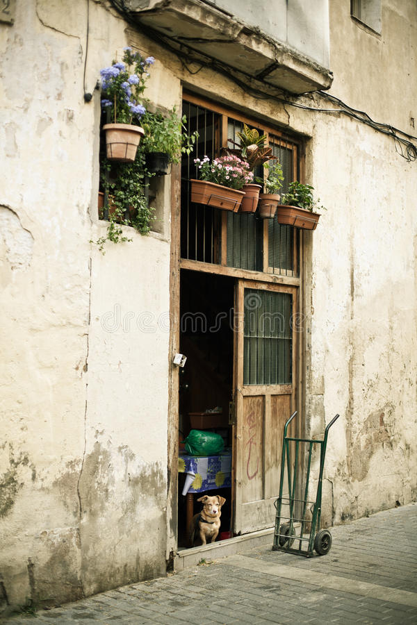 Download Doorway With Flowers, Dog And Pushcart Stock Image - Image: 23667551