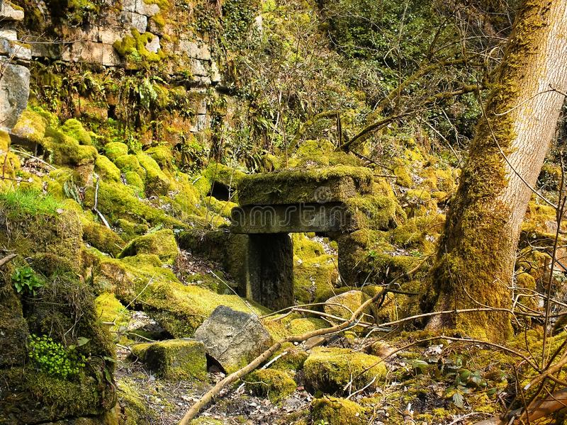 The doorway of a ruined house covered in moss in woodland with scattered stones from the walls stock photo