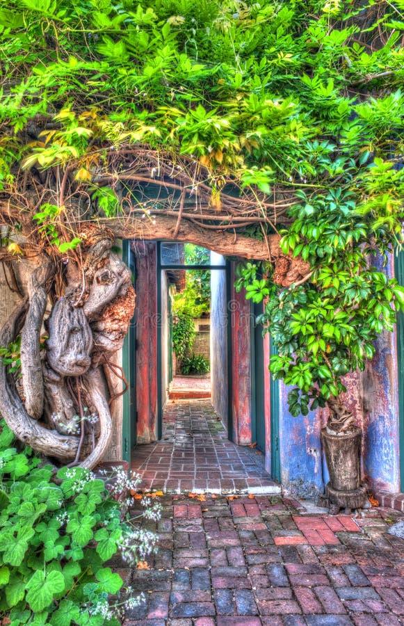 Doorway. royalty free stock image
