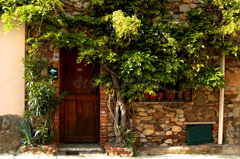 Doorway with vegetation