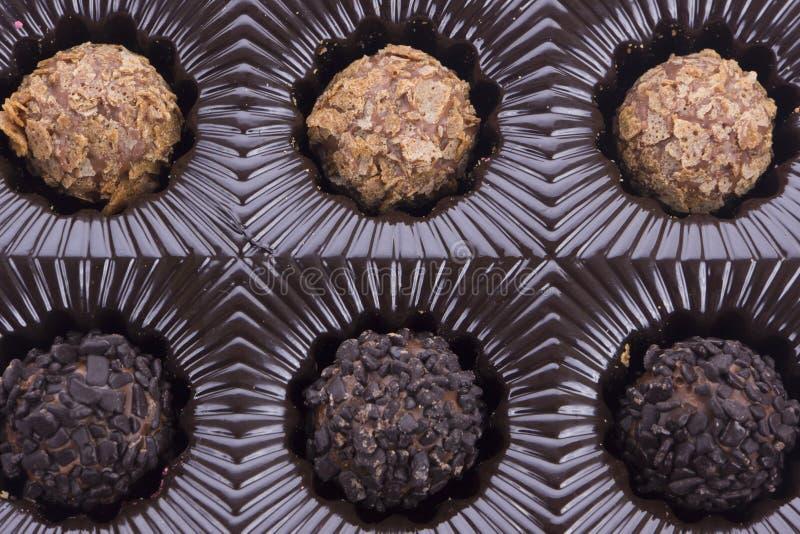Doos van chocoladetruffel stock foto's