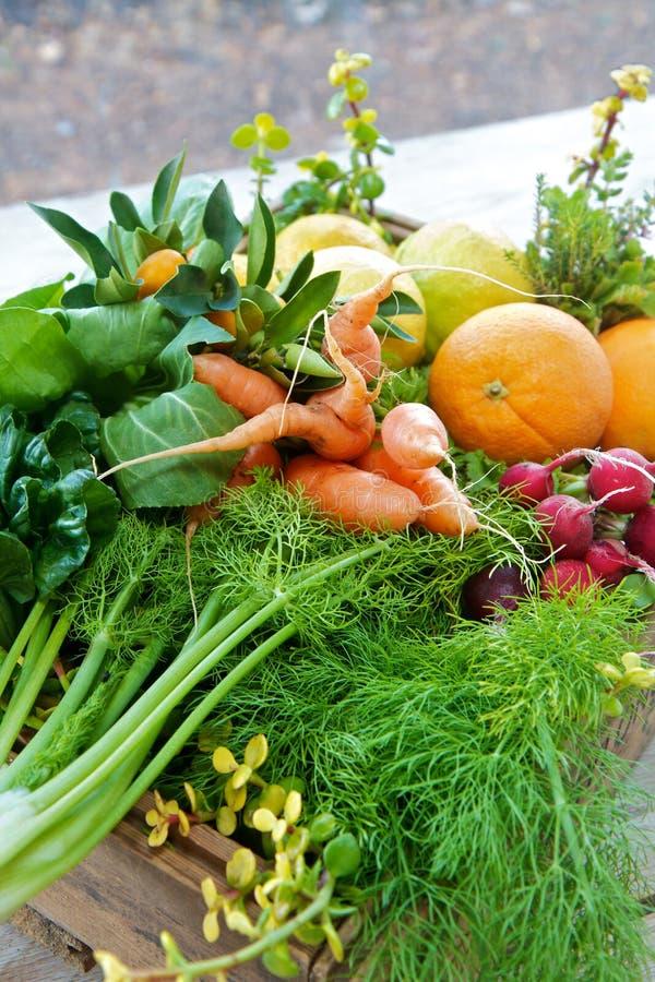 Doos van organische fruit en groenten royalty-vrije stock foto's