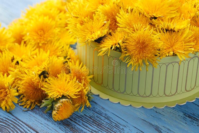 Dooshoogtepunt van gele bloemen stock foto's