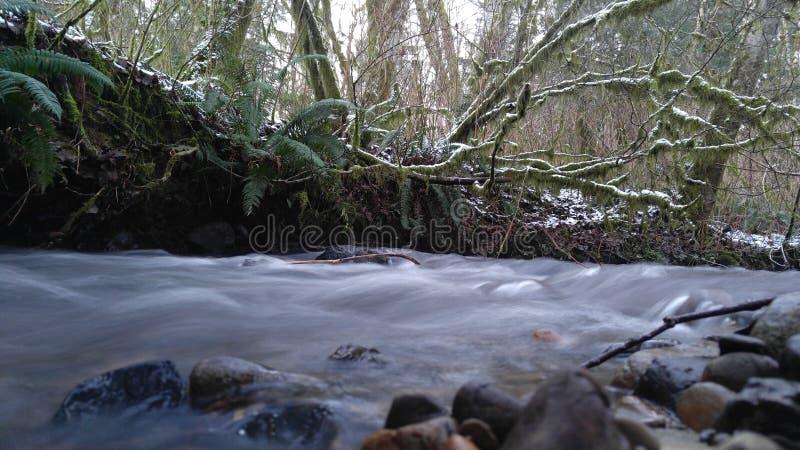 Doover Stream stock photo