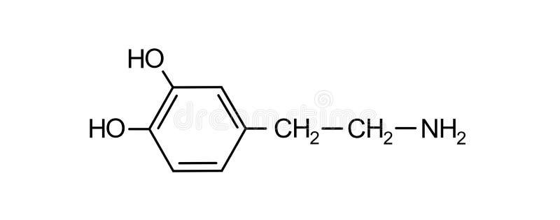 Dopamine chemical formula. Science symbol elements reaction royalty free stock photos