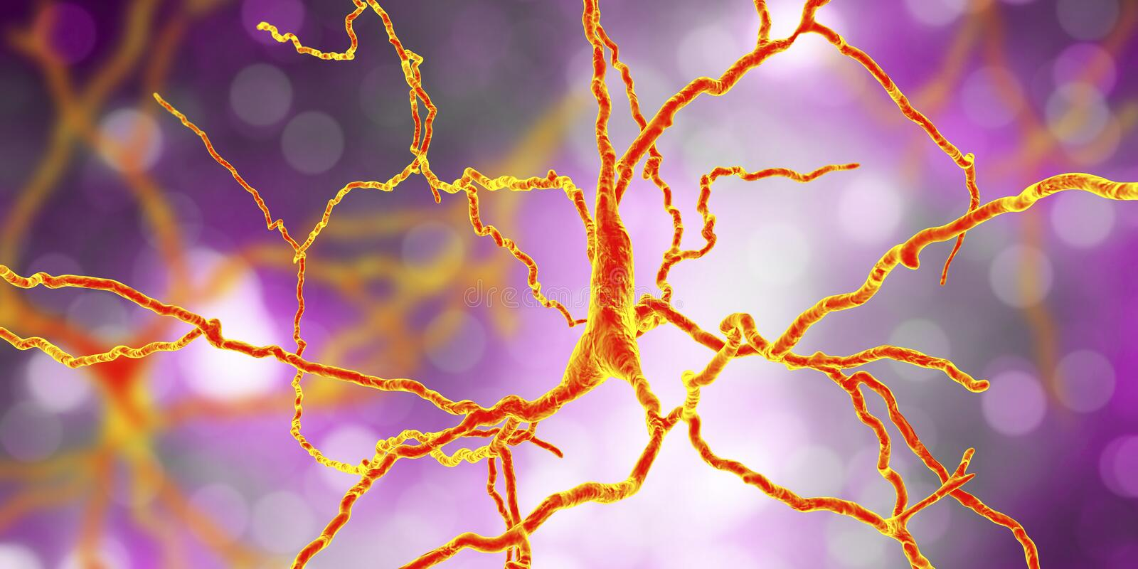 Dopaminergic neuron, datorrekonstruktion vektor illustrationer