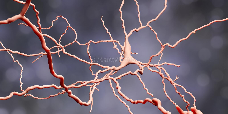 Dopaminergic neuron De degeneratie van deze hersenencellen is de oorzaak van ontwikkeling van de ziekte van Parkinson ` s vector illustratie