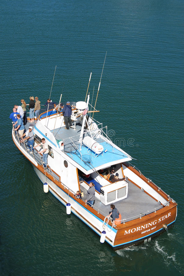 dopatrywanie łódkowaty wieloryb obrazy stock
