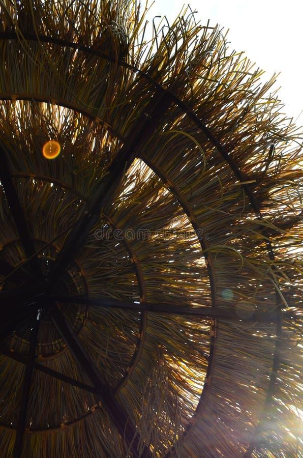 Dopatrywanie dla słońca zdjęcia stock