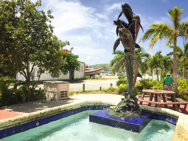 Dophins spéciaux Jamaïque images stock