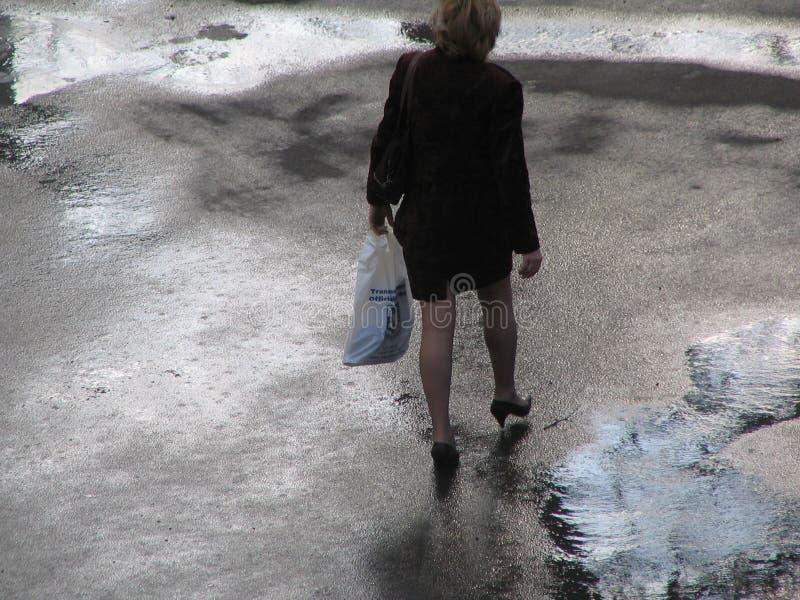 Dopo la pioggia immagine stock libera da diritti
