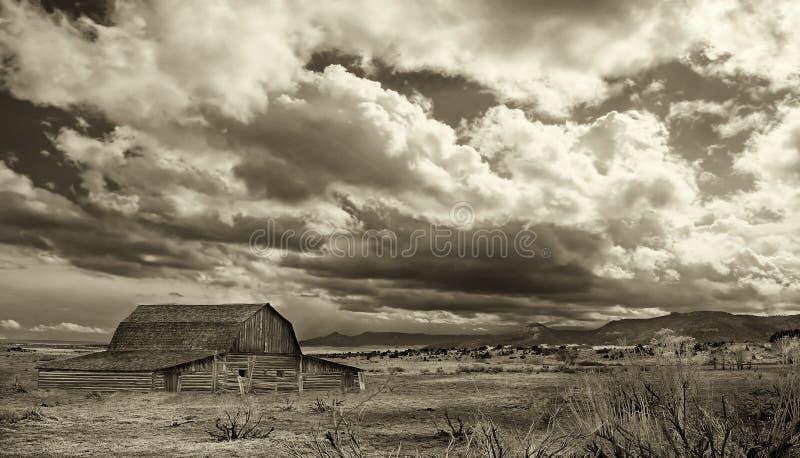 Dopo la pioggia sul praire fotografia stock