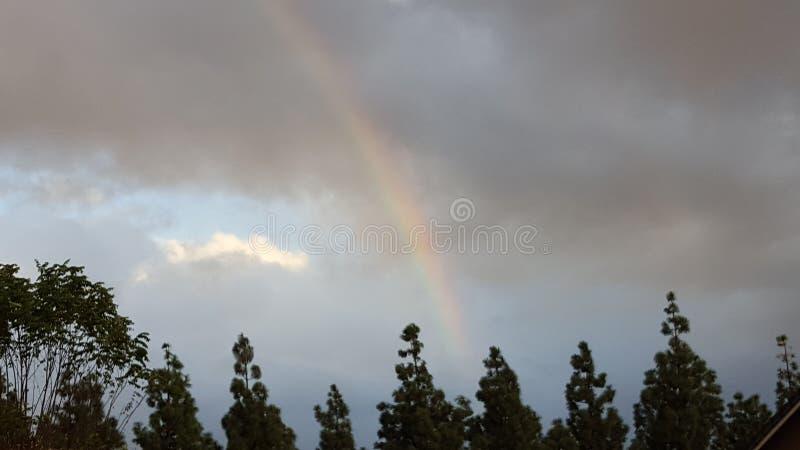 Dopo la tempesta fotografie stock libere da diritti