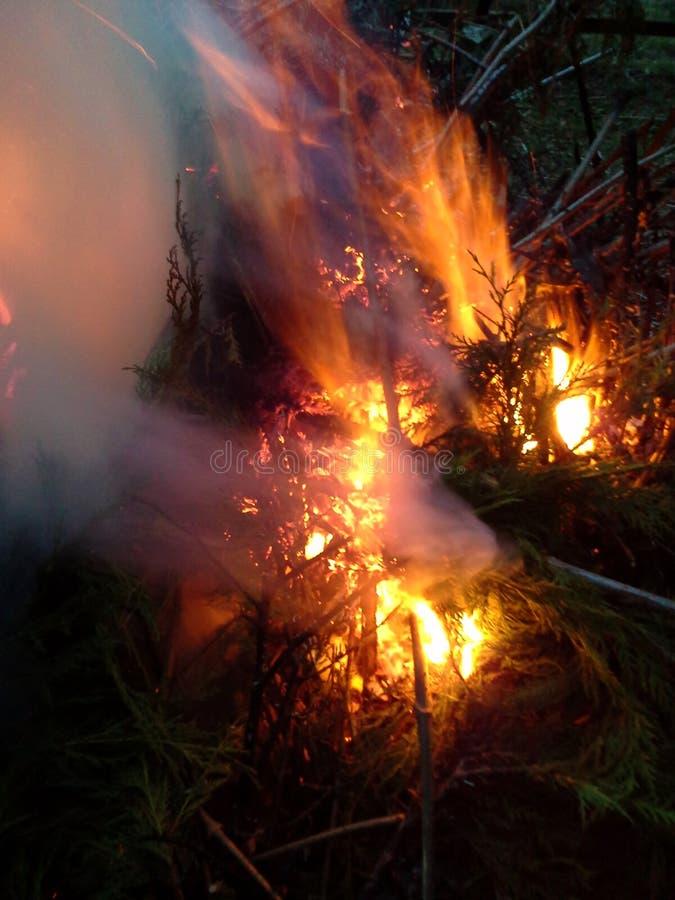 Doppelexplosion von Flammen in einem Feuer stockfotos