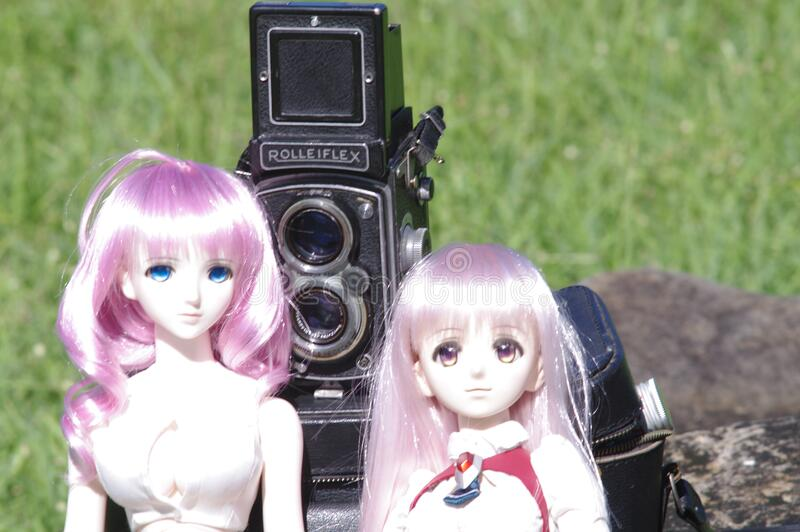 Doppellinsenspiegelreflexkamera und zwei Puppen stockbild