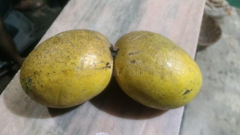 Doppelmangofrucht lizenzfreie stockfotos