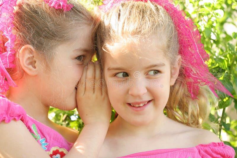 Doppelschwestern, die ein Geheimnis teilen lizenzfreie stockbilder