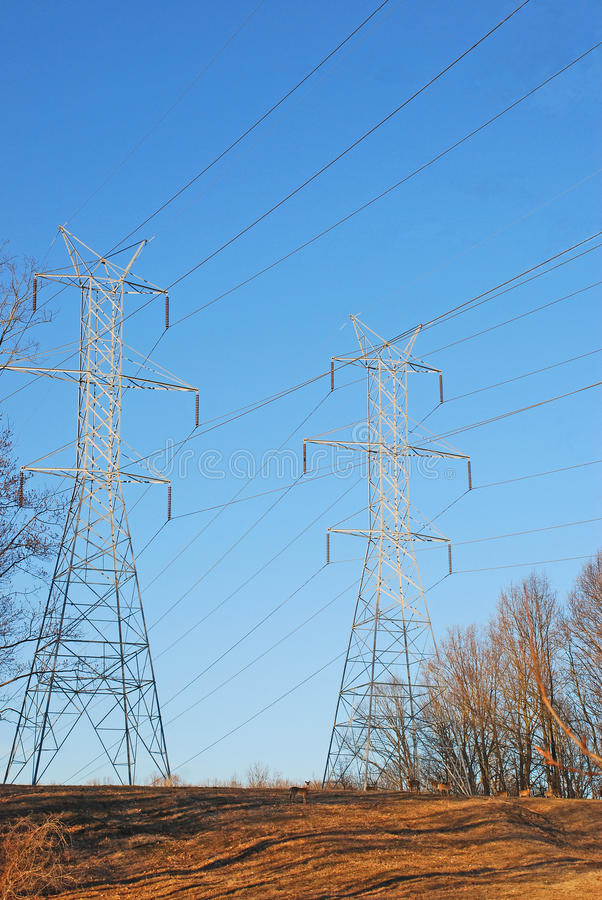 Doppelstromleitung Türme mit Rotwild lizenzfreie stockbilder