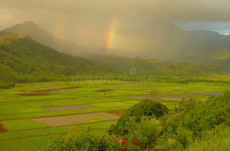 Doppelte Regenbogen, Hanalei Tal lizenzfreie stockfotos