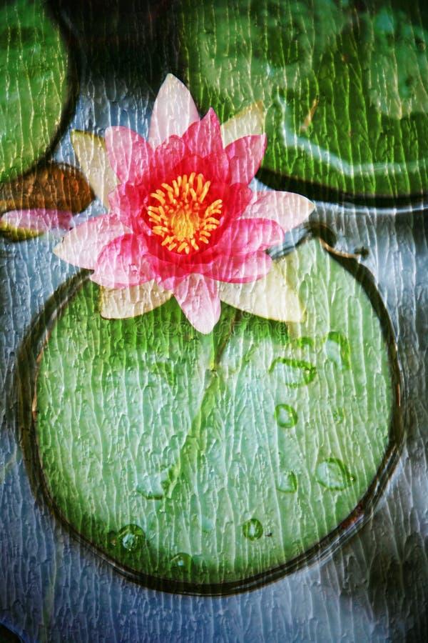 Doppia esposizione degli oggetti floreali fotografia stock libera da diritti